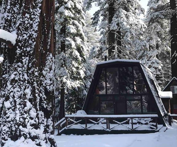 Sylvan Moondance - 2 Bedroom Tahoma Cabin