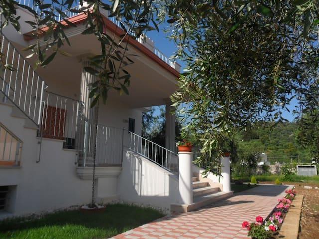 Nuova casa vacanze in bell'uliveto - Peschici - Daire
