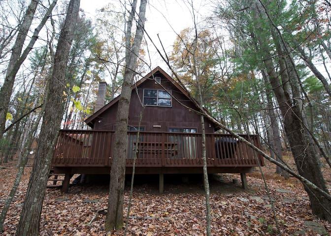 Rustic Luxe Cabin Retreat - Lackawaxen - Hus