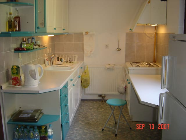 3xbed flat / wireless+parking 公寓 - Ljubljana - Wohnung