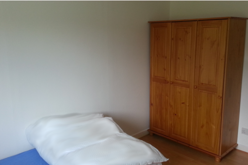 Bedroom with pine or walk in wardrobe