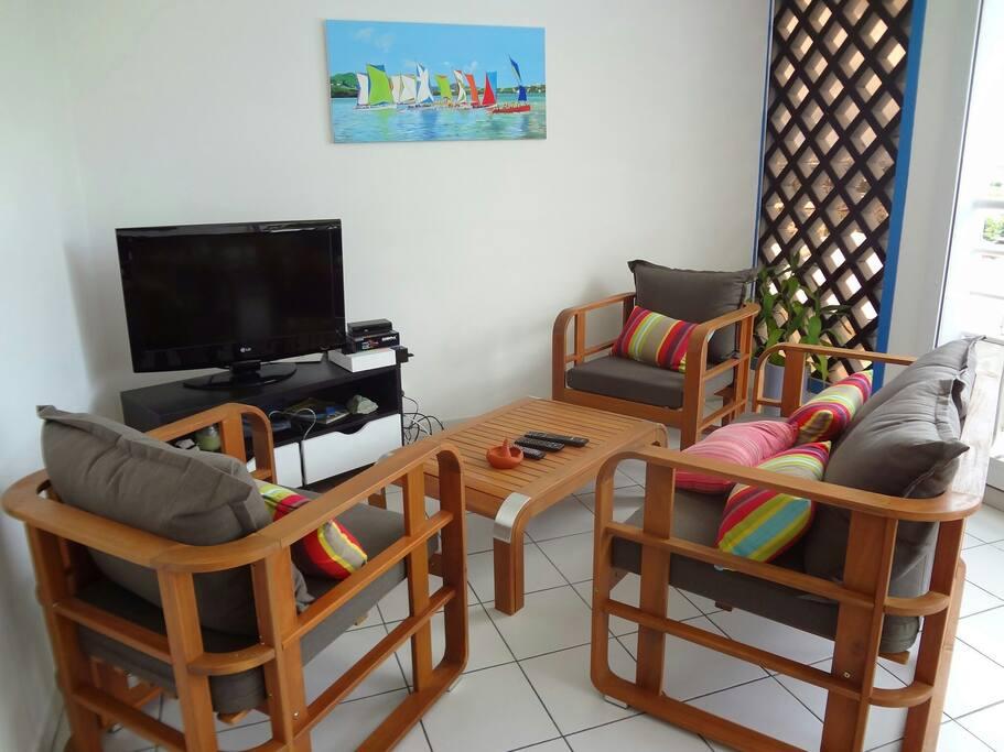 Salon sur la terrasse, television,  canal satellite