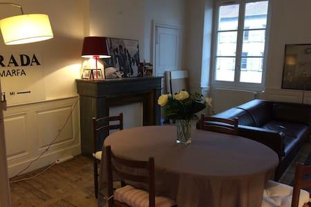 superbe appartement en centre ville - Le Puy-en-Velay - Apartament