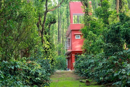 Saphali Estate Homestay, Somwarpet - Bed & Breakfast