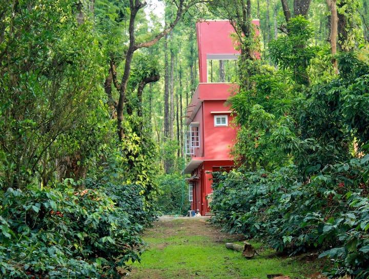 Saphali Estate Homestay, Somwarpet