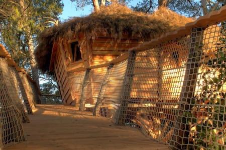 Cabane dans les arbres dans l'Aude - Montréal - Rumah Pohon