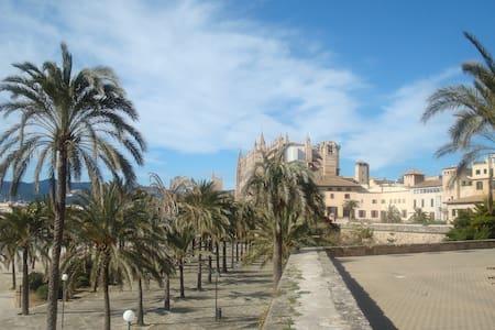 House playa de Palma Mallorc - Sa Torre