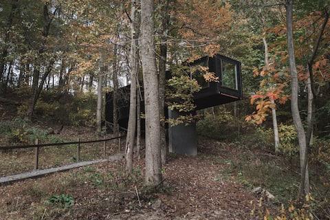 Treehouse Village - The Box