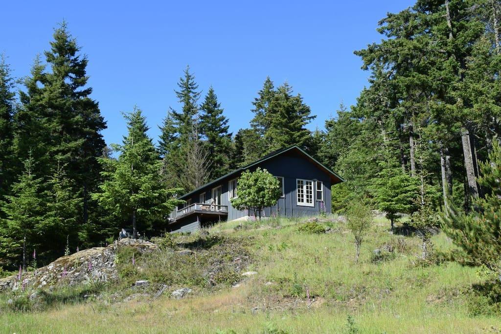 Airbnb Mount Washington Vancouver Island