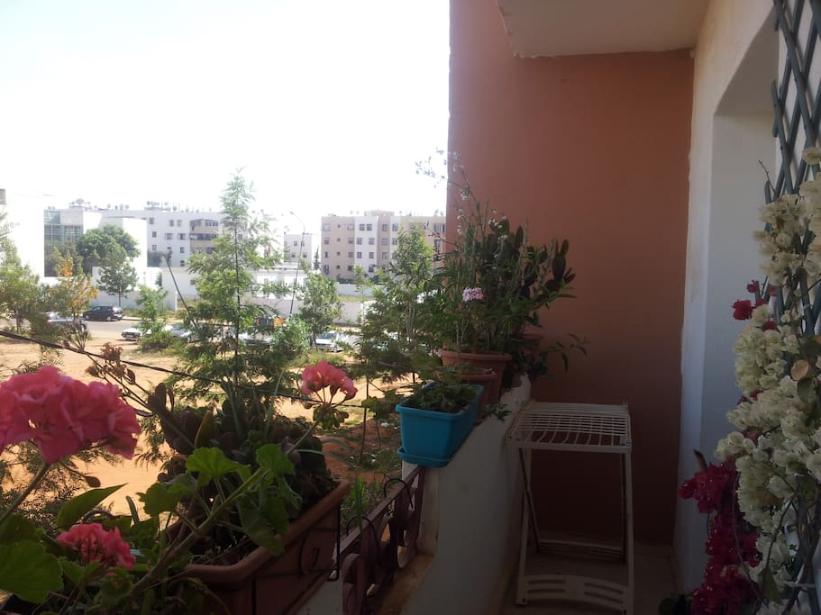 A full sunlight balcony with flower