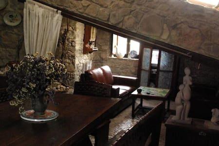 The Ceramist's Rural House - นาซาเร - บ้าน