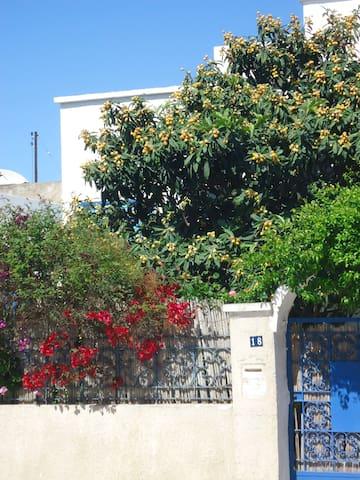 Charmante villa, jardin, La Marsa, Côte Nord Tunis - La Marsa - Hus