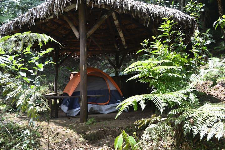 Camping Básico en EcoParque La Escondida