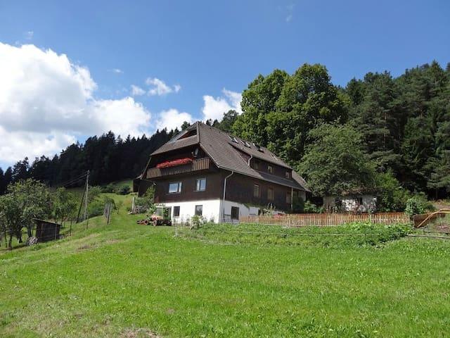 Ferien auf dem sonnigen Berg - Schramberg - House