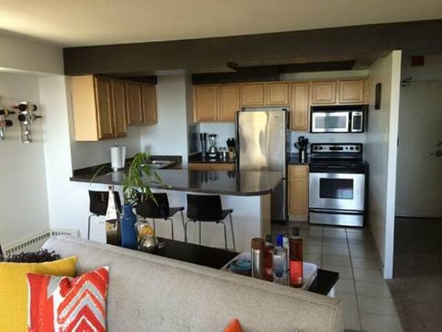 Cozy Full 5th Floor Apartment off the lake - Chicago - Apartment