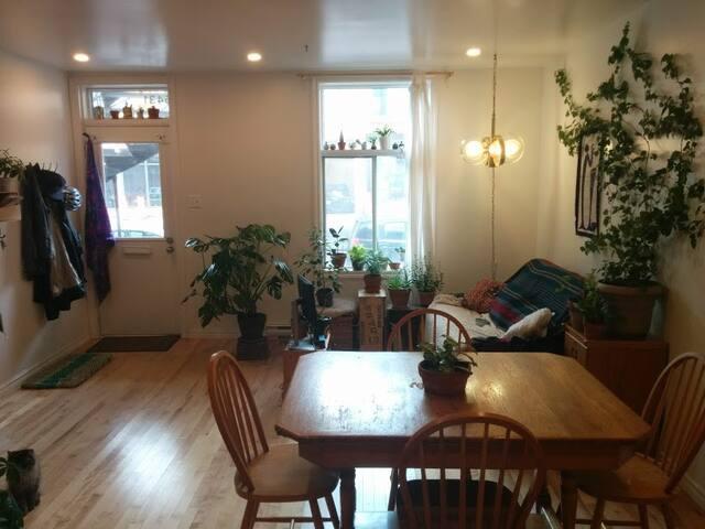 Aire ouverte, vue sur le salon où se trouve un divan-lit bien confortable. Entrée principale donnant sur l'avenue Papineau