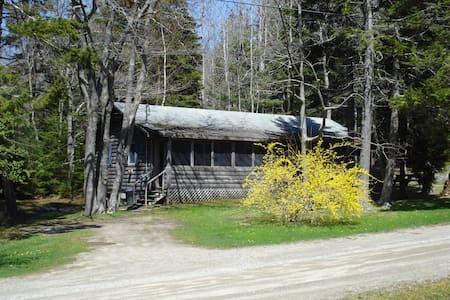 Sherwood Forest Cabin #1 - Brístol - Cabaña