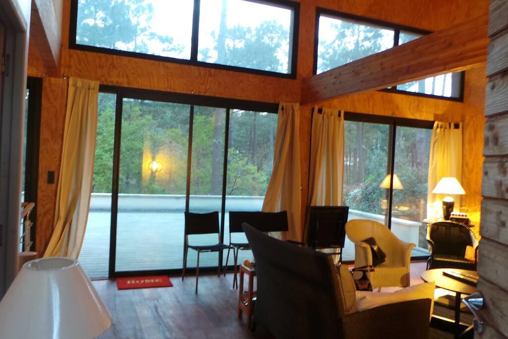Grand séjour avec terrasse et vue sur les pins