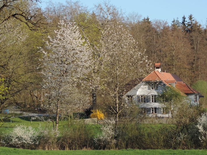 Guesthouse im Wald next to Bern