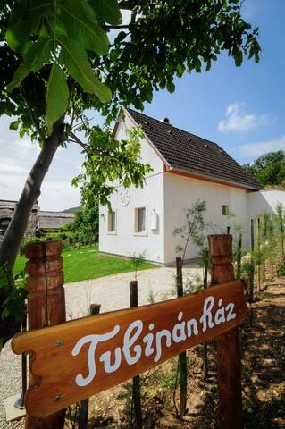 Balatonudvari, szőlőhegy - Balatonudvari