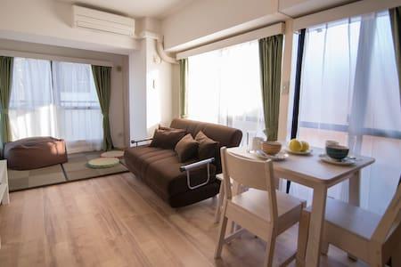 Brand new spacious apartment with full appliances - Shinjuku