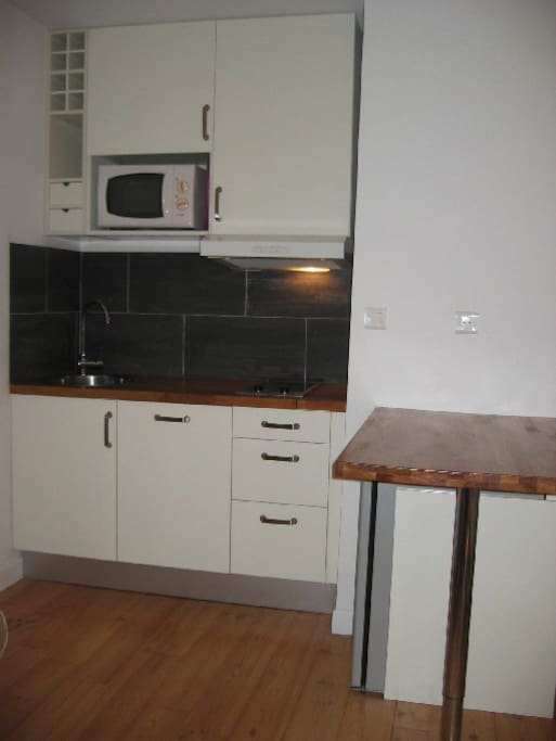 Kitchen with all amenities such as cooker, fridge, micro wave and even dishwasher