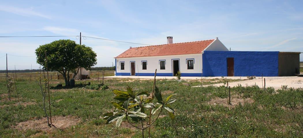 Eira Nova da Colmeia - Porto Covo - House