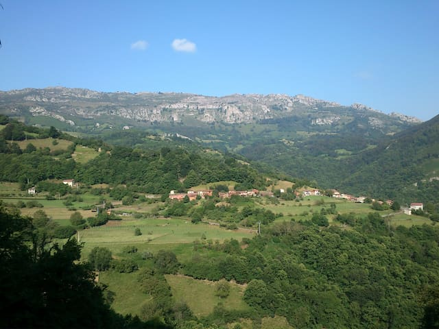 Peaceful holiday in rural Asturias - Paniceres, Pola de Laviana - Lägenhet