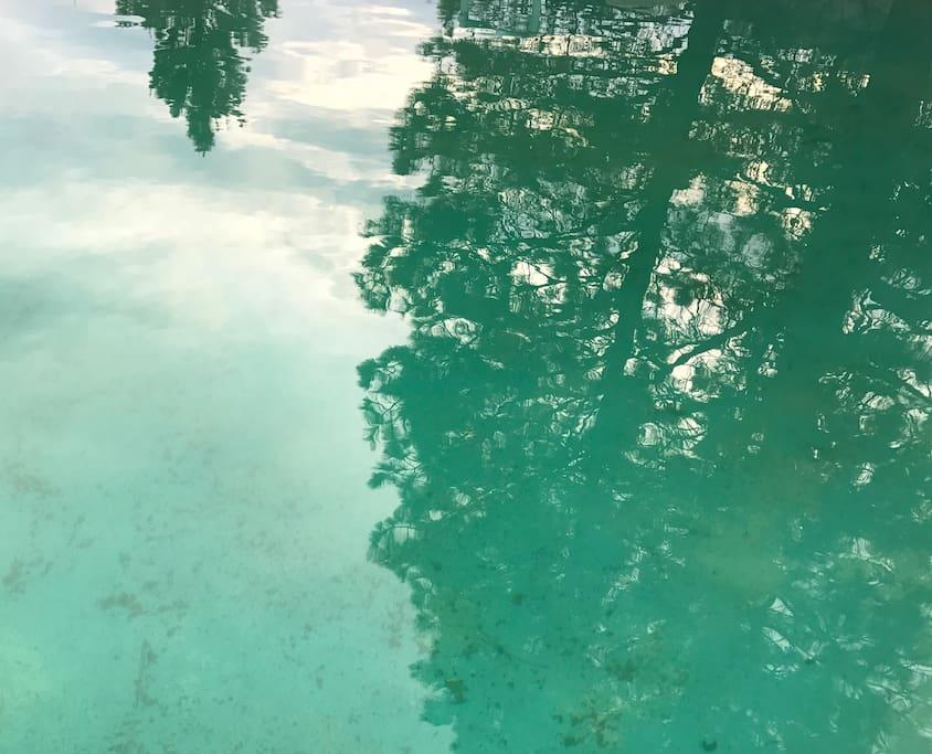 Hot Springs big pool
