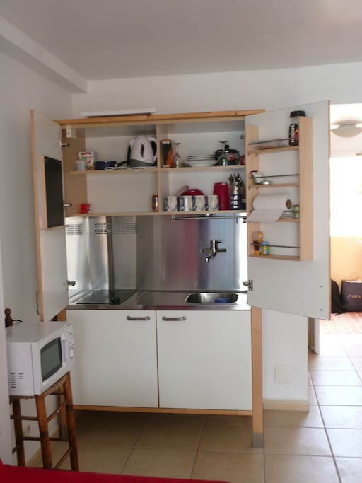 Microwave & Kitchenette; 2 electric hobs and fridge