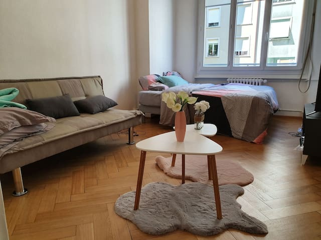 Jolie appartement centre ville de Genève