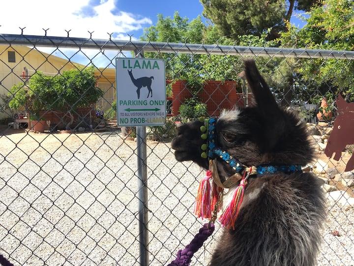 Ixchel approves of sign