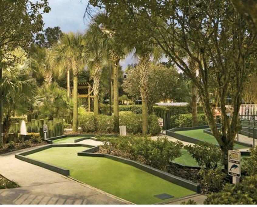 Take a walk and enjoy this beautiful garden.