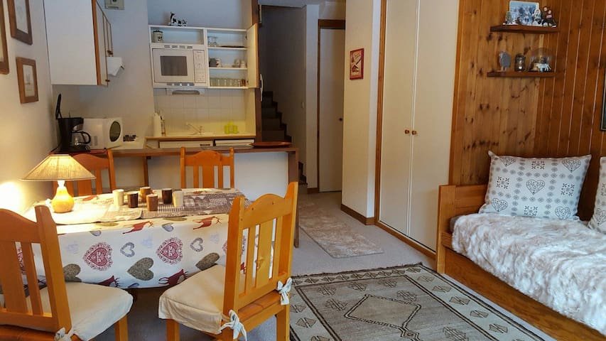 STUDIO SKI IN SKI OUT APARTMENT EXPOSED SOUTH IN THE VILLAGE CENTRE OF LA TANIA