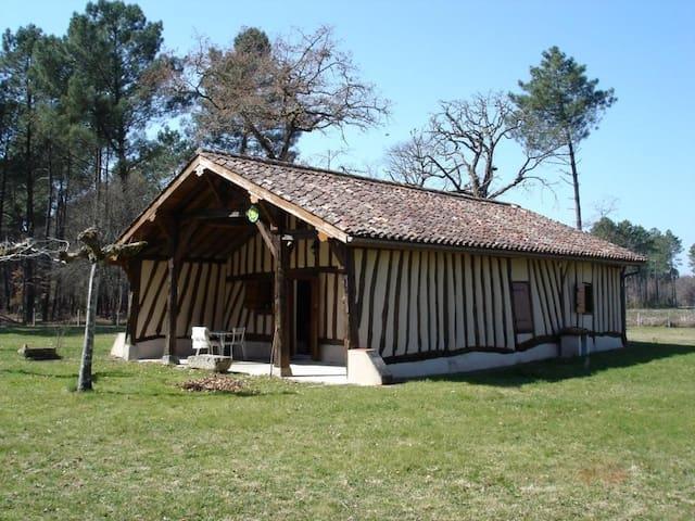 LE SURREY à 15km de Casteljaloux - Saint-Michel-de-Castelnau - Haus
