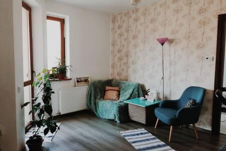 Stylish and Cozy Apartment near Cluj-Napoca