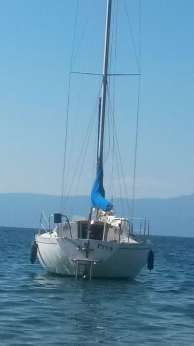 The name of sailboat is Prva. It means She First