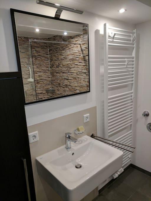Das Bad (Dusche, Waschbecken, WC) wurde im Jahr 2017 komplett renoviert.