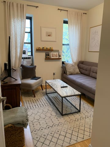 Cozy 1 Bedroom Apt in Greenwich Village