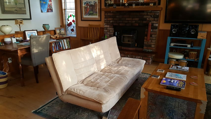 Comfortable futon in the living room that folds down into a bed.