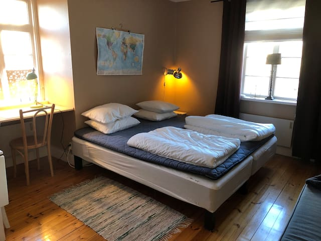 Cozy apartment, 1 bedroom, central