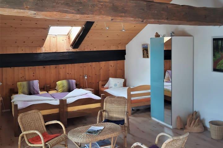 Chambre d'hôtes - Ferme O'Clés, (Le Cerneux-Veusil), Bed & Breakfast (5 people)