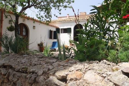 Sierra de la Tramontana village house garden  view