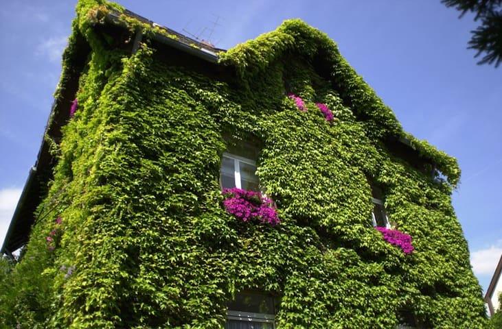 "Apartment ""Bambuswald"" - Hofheim - Rumah"