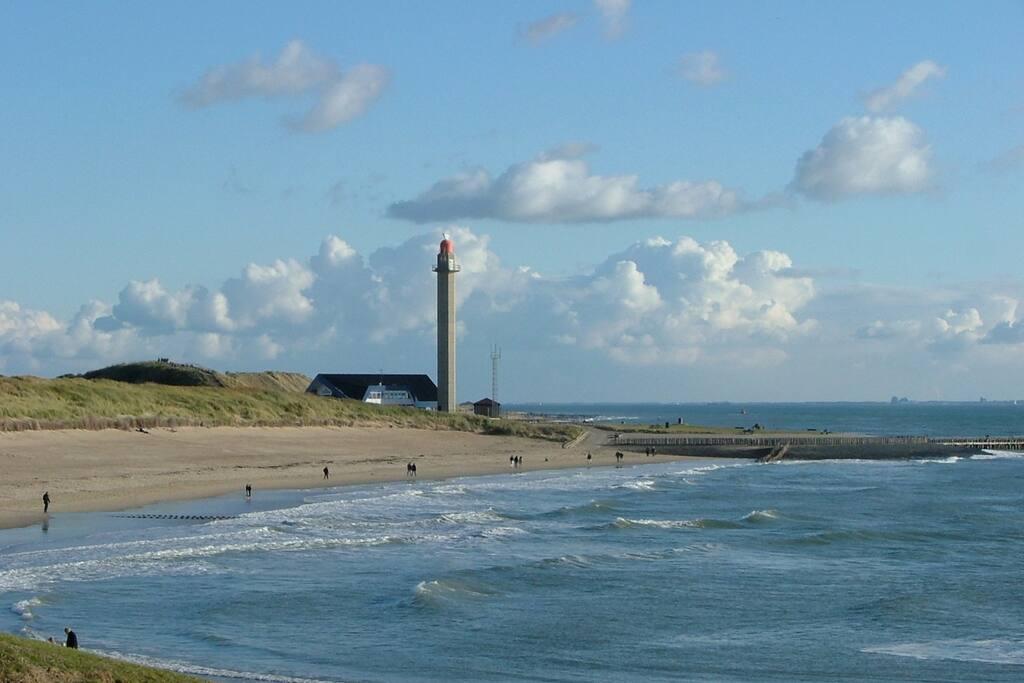 Het badstrand op 2 minuten loopafstand van de studio. In de zomer staan er strandhuisjes en is het strandpaviljoen dagelijks open.