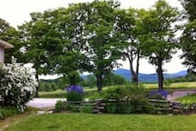Looking east to Spruce Mountain in June from our front yard