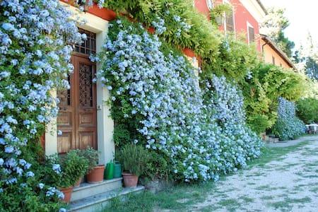 "Villa Galli app. ""Generale Alfredo"" - Fara In Sabina - Apartament"