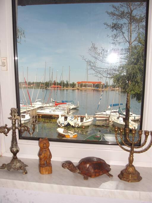Widok z okna z kuchni