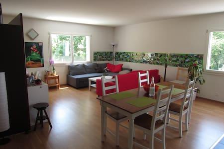Spacieux 3 pièces  - Vevey - Apartmen