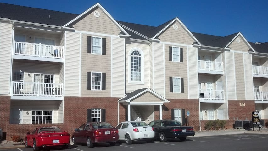 from lu apartments for rent in lynchburg virginia united states